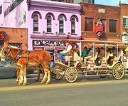 On a Carriage with Nashville Carriage Rides