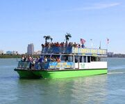 Clearwater Dolphin Cruise