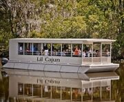 Lil Cajun Boat on the Swamp and Bayou Tour