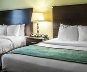 Room Photo for Comfort Suites At Fairgrounds-Casino