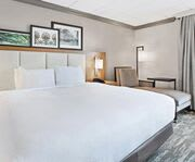 Room Photo for Doubletree Hotel New Orleans
