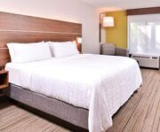 Room Photo for Holiday Inn Express Hotel & Suites Tampa-Anderson Rd/Veteran