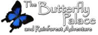 Reviews of Butterfly Palace and Rainforest Adventure