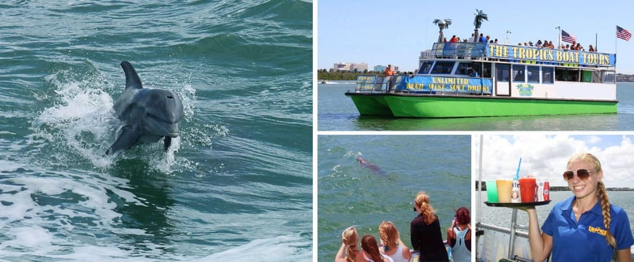 Clearwater Dolphin Cruise Collage
