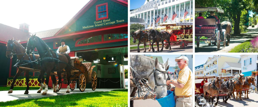 Mackinac Island Carriage Tours Collage