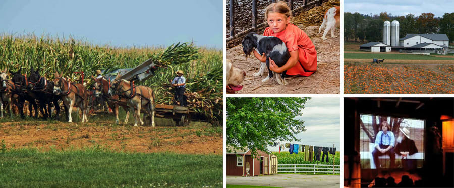 Lancaster Amish Film, House, and Farmland Experience Collage