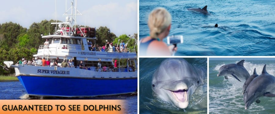 Myrtle Beach Dolphin Sightseeing Cruises Collage