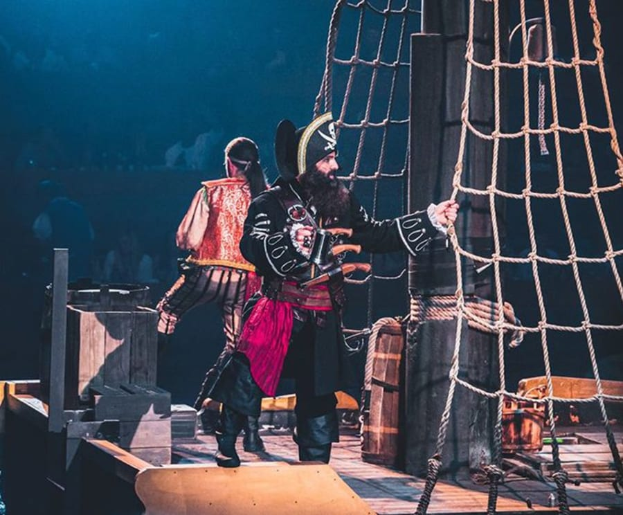 Come and See Pirates Voyage Dinner & Show