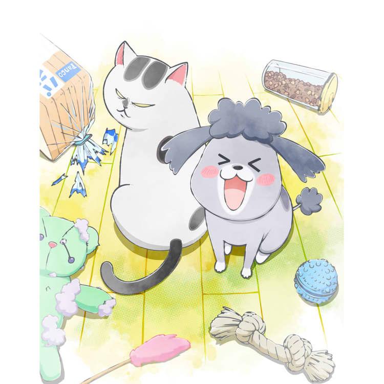 【5組10名にチケットプレゼント】犬と猫どっちも飼ってると毎日たのしい展