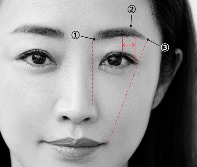 ①より顔の中心側には色をつけないよう注意