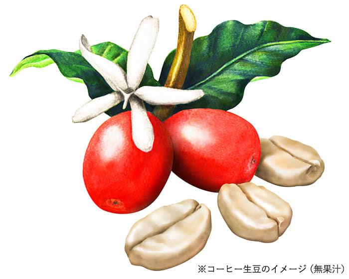 ※コーヒー生豆のイメージ(無果汁)