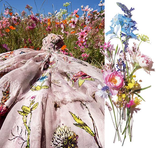陽光あふれる南仏グラースの花畑/ミレフィオリ(幾千もの花々)のブーケ