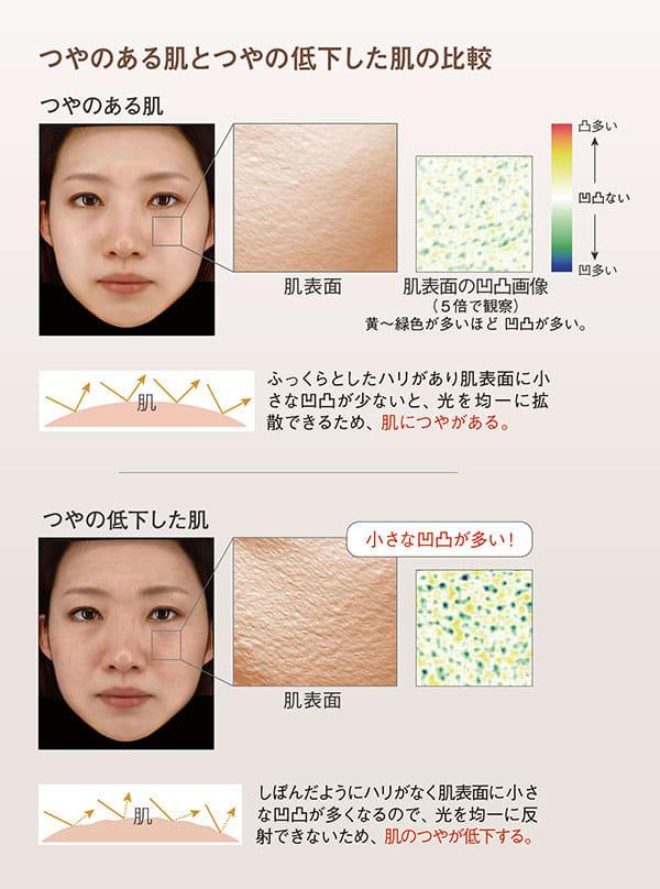 つやのある肌とつやの低下した肌の比較:【つやのある肌】ふっくらとしたハリがあり肌表面に小さな凹凸が少ないと、 光を均一に拡散できるため、 肌につやがある。/【つやの低下した肌】しぼんだようにハリがなく肌表面に小さな凹凸が多くなるので、 光を均一に反射できないため、 肌のつやが低下する。