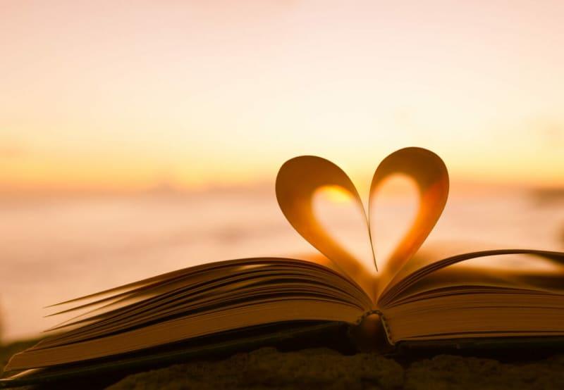 読書をするのも大切な日です。