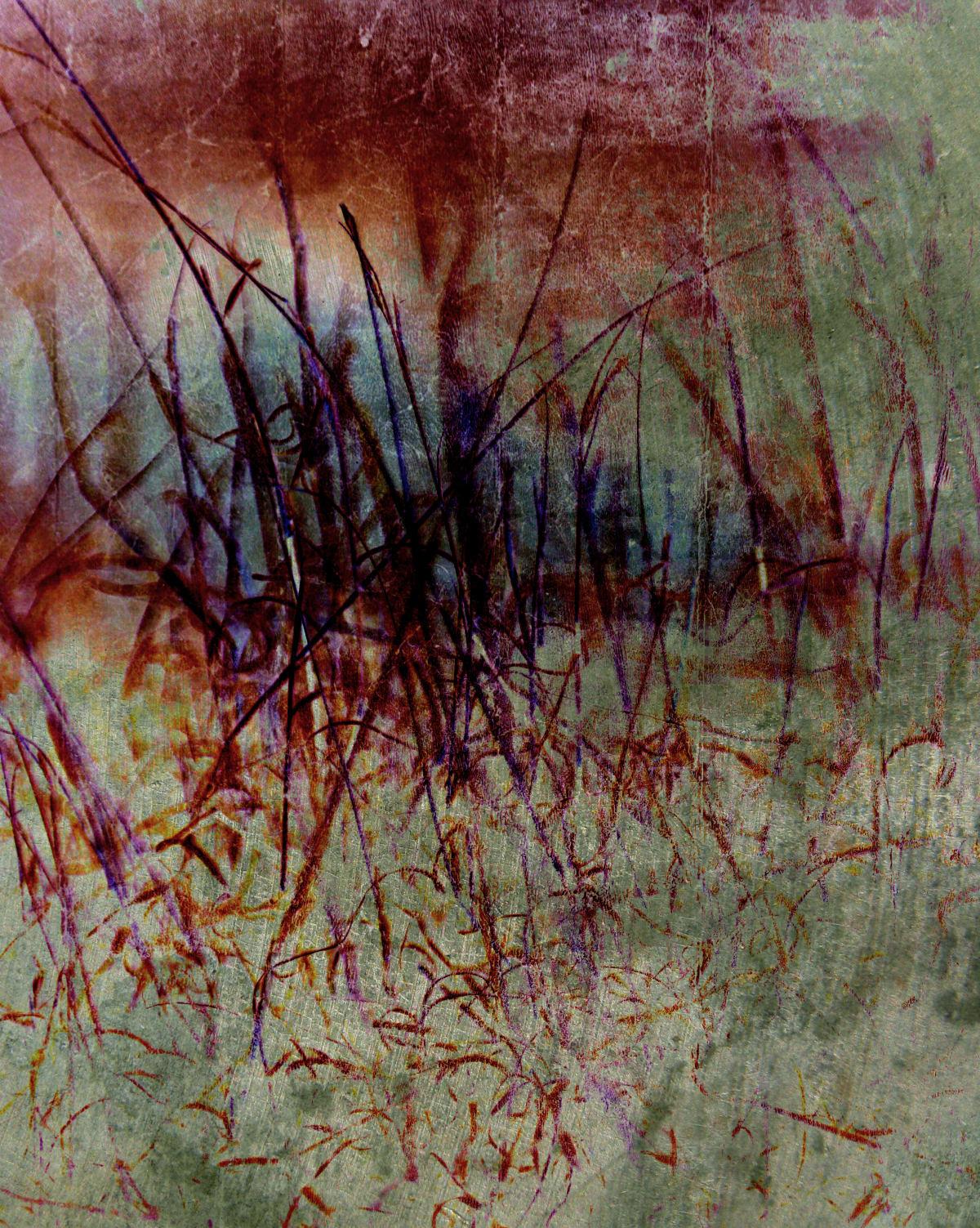 The Persistence of Desert Grass