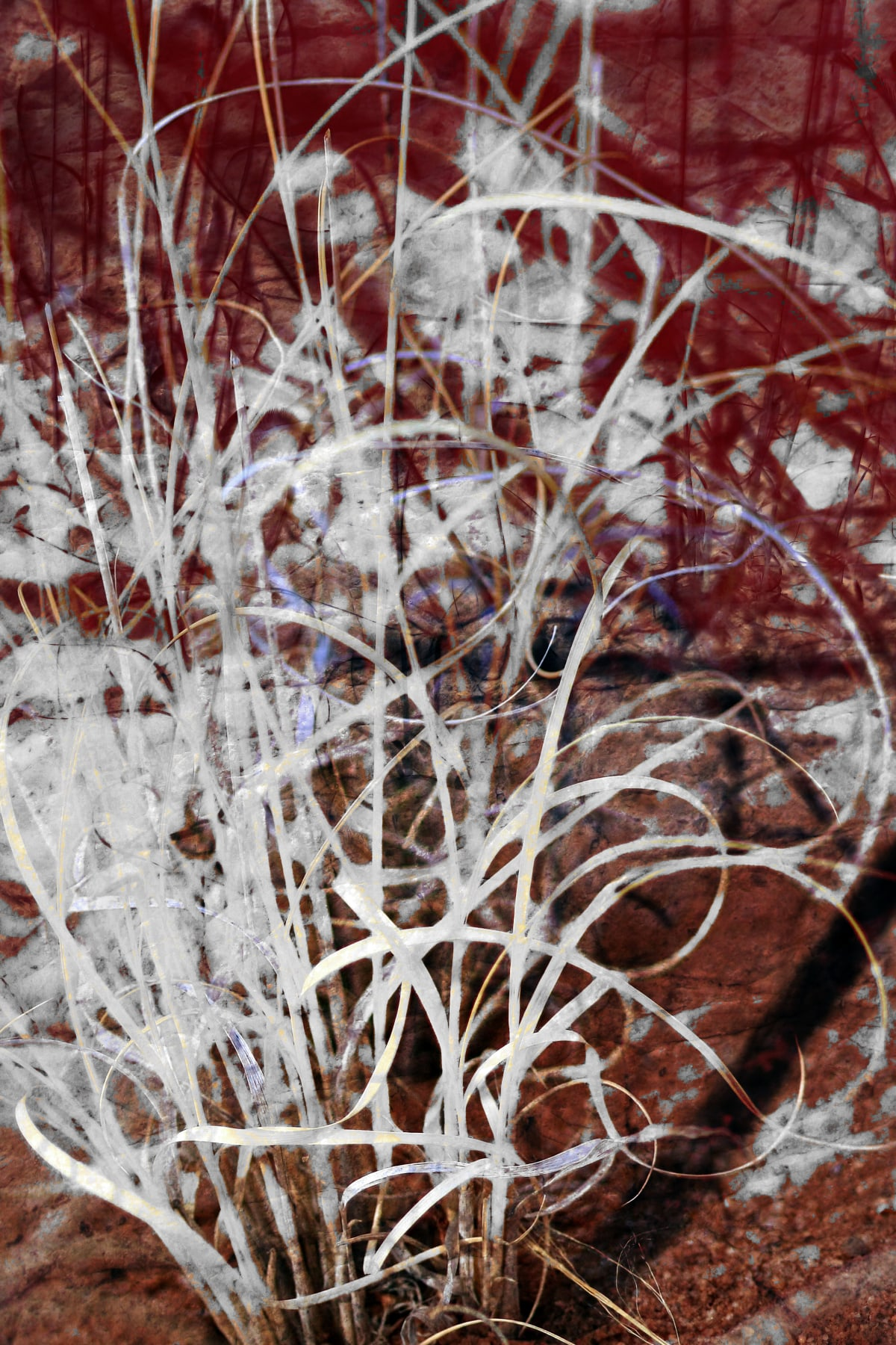 Abstract Expressionist Grass