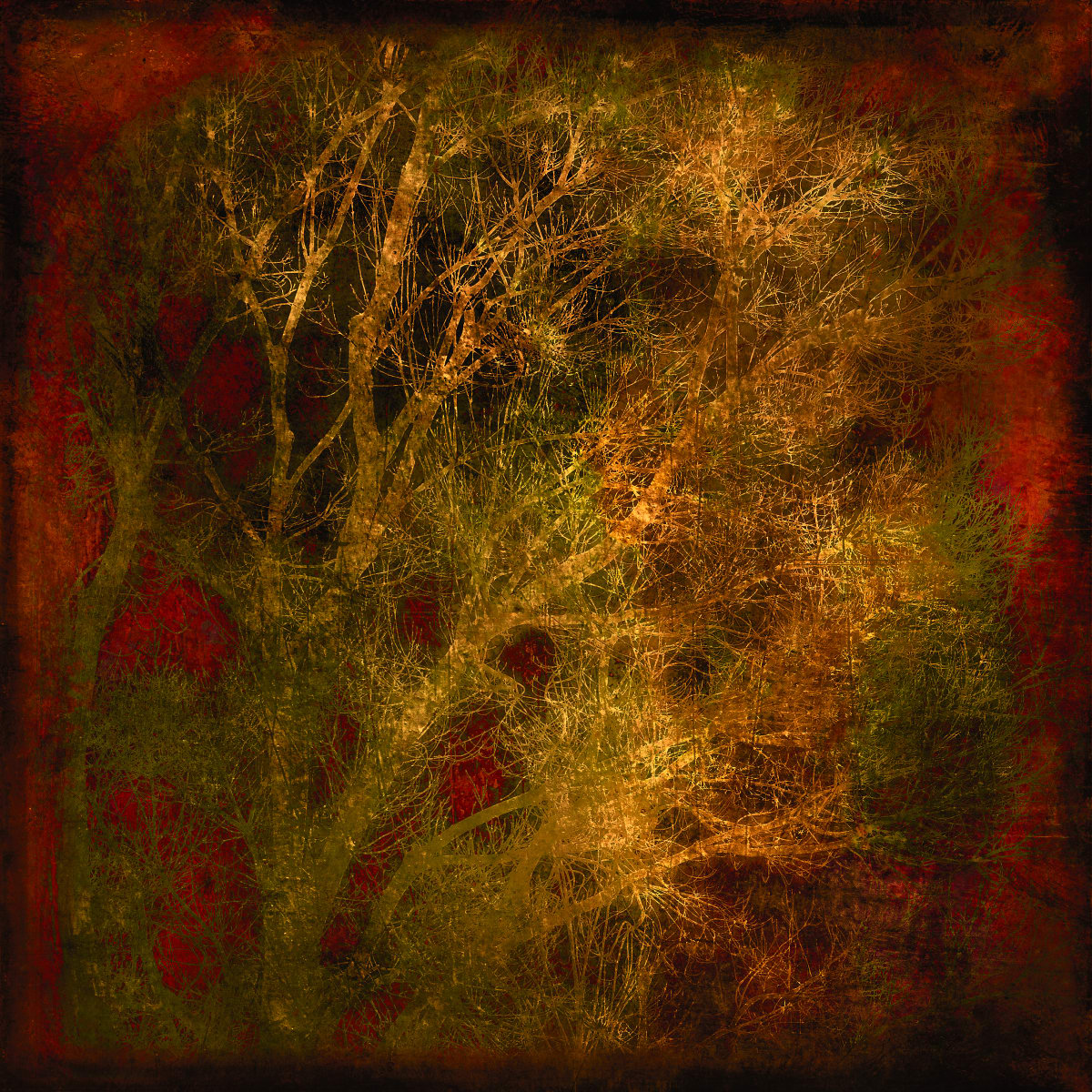 Winter Trees in Gold and Red