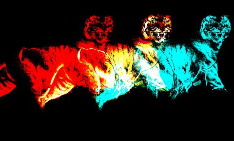 Tiger Multiplied