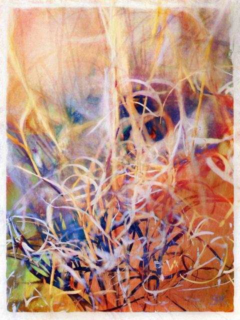Tangled Desert Abstract