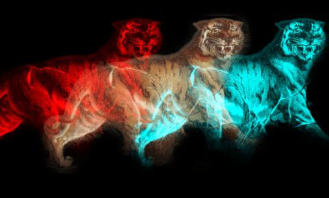 Tiger Multiplied 2