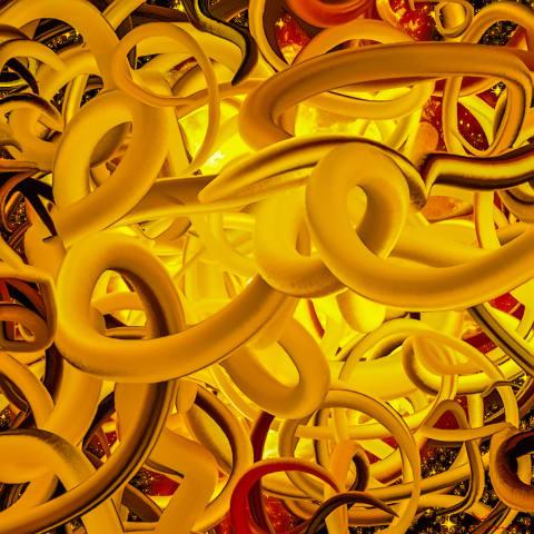 Golden worms #1