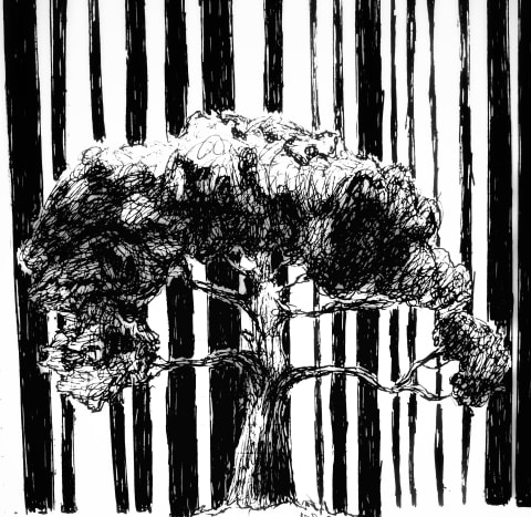 Tree Barcode