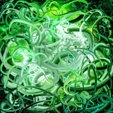 Colorworms Organic #1