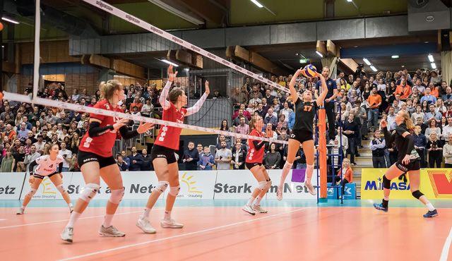 Am Samstag Saisoneröffnung von NawaRo Straubing gegen Stuttgart - Foto: Schindler