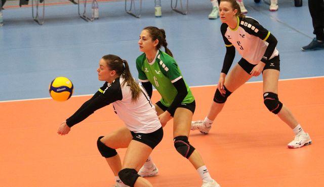 Volleyball-Team Hamburg empfängt Tempelhof-Mariendorf - Foto: VT Hamburg