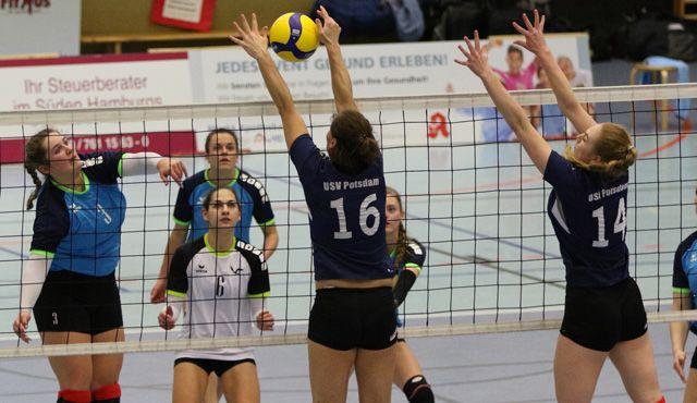 Volleyball-Team Hamburg reist mit Selbstvertrauen nach Potsdam - Foto: VTH Lehmann