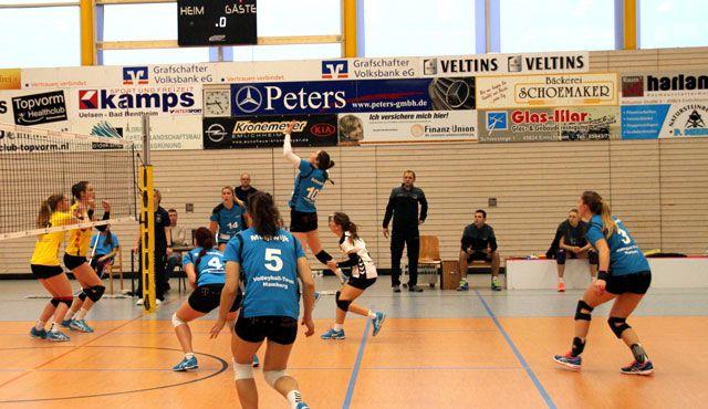 Volleyball-Team Hamburg mit Auswärtsniederlage - Foto: VTH