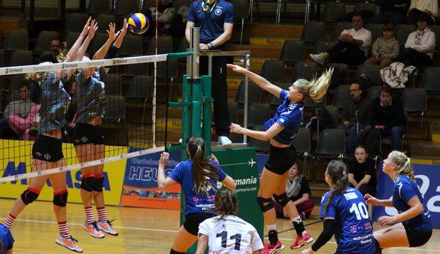 Volleyball-Team Hamburg verliert beim Vizemeister - Foto: VTH/Lehmann