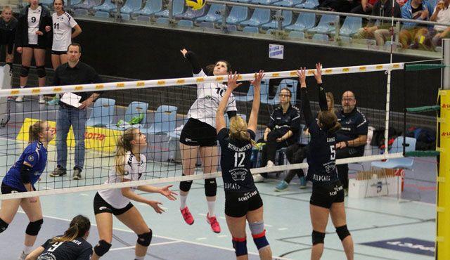 Heimniederlage für das Volleyball-Team Hamburg - Foto: VTH/Lehmann