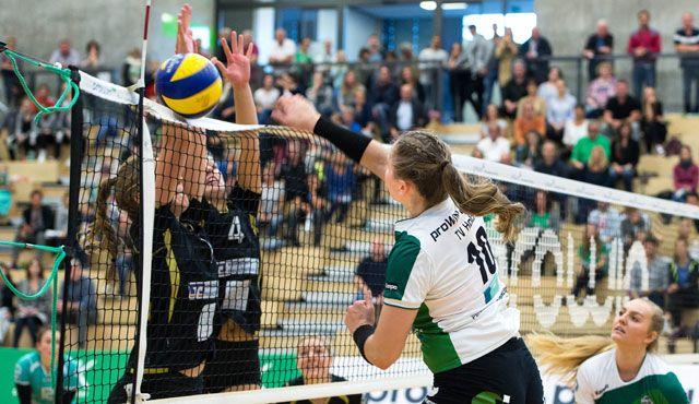 proWIN Volleys empfangen AllgäuStrom Volleys in der Grünen Hölle - Foto: Georg Kunz