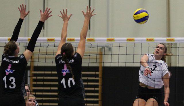 Volleyball-Team Hamburg reist zum Regionalpokal nach Stralsund - Foto: VTH/Lehmann