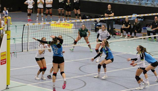 Niederlage für Volleyball-Team gegen Grün-Weiß Eimsbüttel  - Foto: VT Hamburg/Lehmann