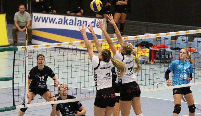 Volleyball-Team Hamburg sieht sich in Leverkusen nicht chancenlos - Foto: VTH/Lehmann