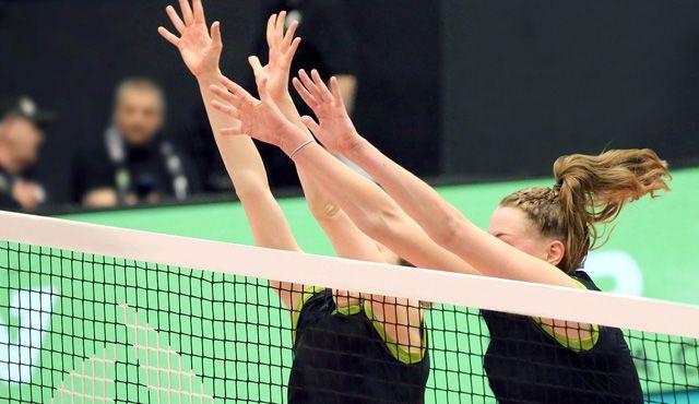 Sponsoring im Volleyball: Neue Möglichkeiten? - Foto: Pixabay