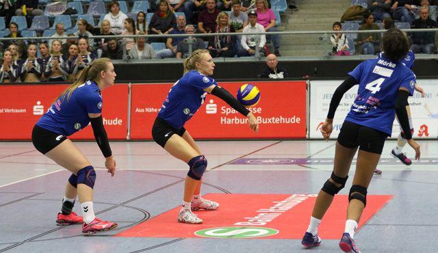 Volleyball-Team Hamburg unterliegt im Finale des Regionalpokals - Foto: VTH Lehmann