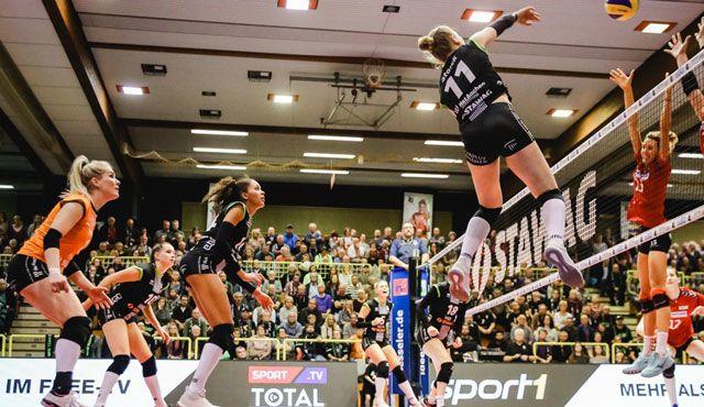 Aachen erwartet gespannt den Dresdner SC - Ladies in Black Aachen\\ Luz Müller