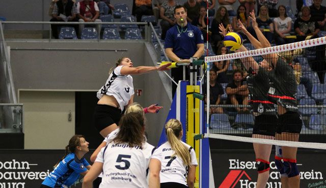 Volleyball-Team Hamburg in Liga und Pokal gefordert - Foto: VTH/Lehmann