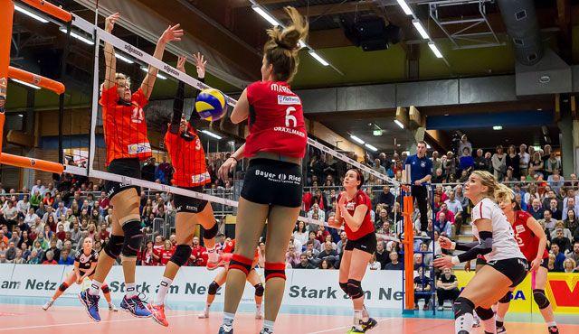 Knapp 60 Prozent des Etats von NawaRo Straubing für die 1. Liga stehen - Foto: Schindler