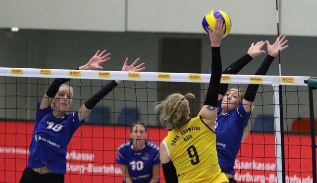 Volleyball-Team Hamburg reist zum Meister nach Köln - Foto: VTH/Lehmann