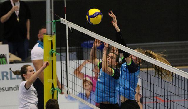 Volleyball-Team Hamburg verliert beim TSV Tempelhof-Mariendorf - Foto: VT Hamburg