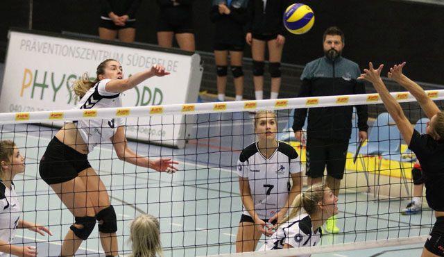 Volleyball-Team Hamburg empfängt die Skurios Volleys Borken - Foto: VTH/Lehmann