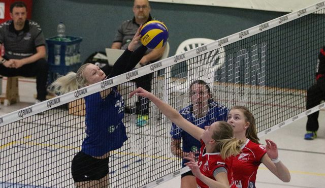 Keine Punkte fürs Volleyball-Team Hamburg - Foto: VTH/Lehmann