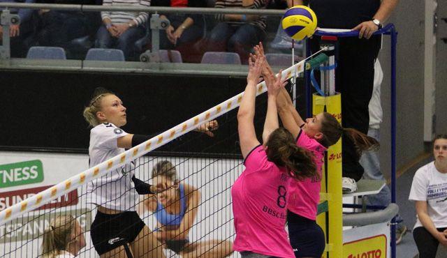 Volleyball-Team Hamburg zu Gast beim VCO Schwerin - Foto: VTH/Lehmann