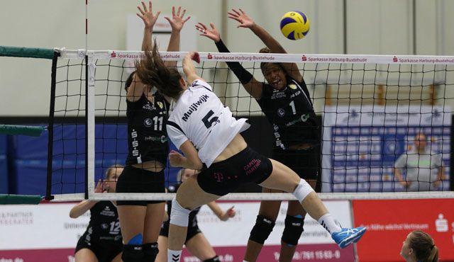 Volleyball-Team Hamburg zu Gast beim Tabellennachbarn - Foto: VTH/Lehmann