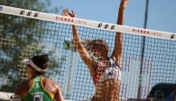 Das ist die Crème de la Crème des deutschen (Beach-)Volleyballs Foto: pixabay