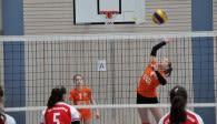 Am Wochenende messen sich die besten Volleyball-Talente Bayerns beim Bayernpokal Foto: Krause